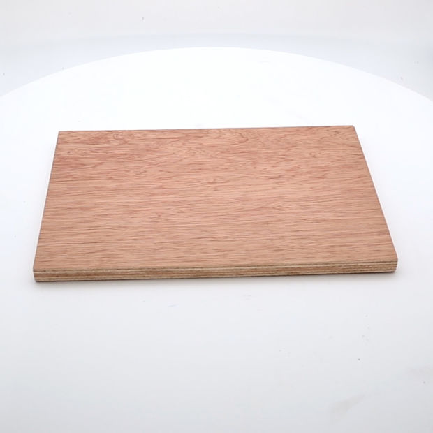 China Factory Price of Bintangor Commercial Plywood and Film Faced Marine Plywood pictures & photos