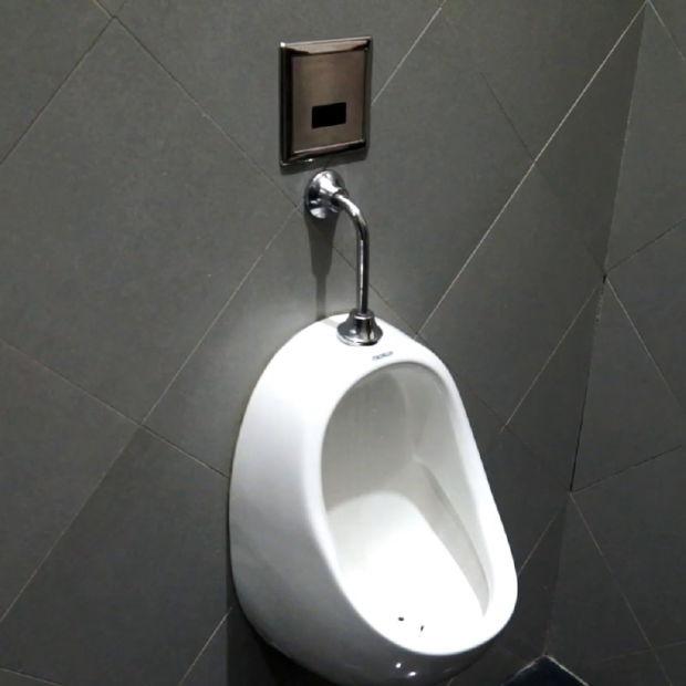 Wc cuarto de baño accesorios de enjuague automático automático del ...