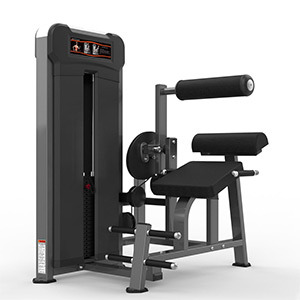 Realleader Back Extension Commercial Gym Equipment Fitness Sport (M3-1016)