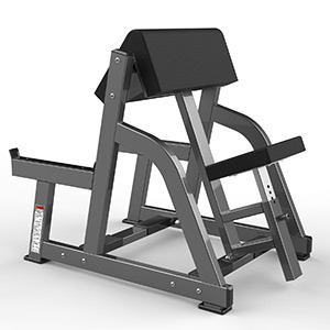 Realleader Sports Home Gym Equipment of Seated Arm Curl (FW-2004)