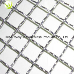 Stainless Steel /Galvanized Crimped Screen Wire Mesh