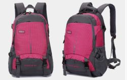 Travelling Sport Backpack School Bag Laptop Bag Backpack Bag Yf-Pb26154