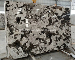 China Brazil White Granite Slab Brazil White Granite Slab - Brazilian tile manufacturers