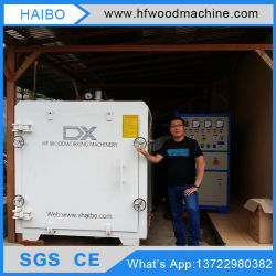 SGS Certificated Wood Drying by High Frequency Vacuum Heating Woodworking Machine