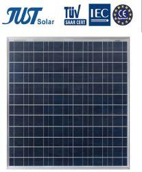 155W Solar Panels, Solar Module with Best Price