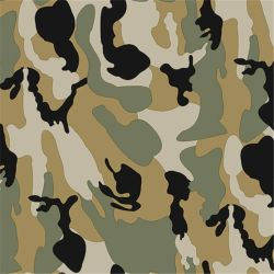 Wholesale Silk Chiffon Fabric Pure Natural Silk Fabric (SZ-0084)