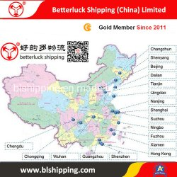 From China to Serbia Belgrad Container Freight Sea Land Transportation