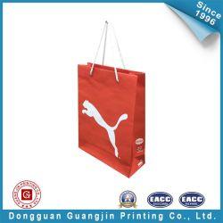 Luxury Color Fashion Shopping Paper Bag (GJ-Bag055)