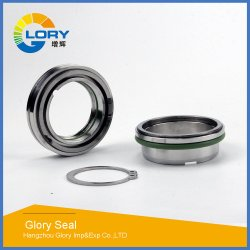 Mechanical Seals Auto Part Fql-65mm for Flygt Pump