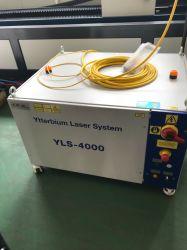 Metal Fiber Laser Cutting Machine for Sheet Stainless Steel Carbon Aluminum 1000W, 2000W, 3000W, 4000W, 6000W