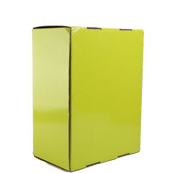 Corrugated Shipping Box for Sports Shoes Packaging Color Printing