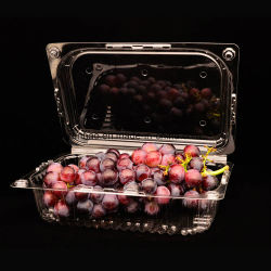 Food Grade Disposable Clear Clamshell Plastic Fruit Packing Box