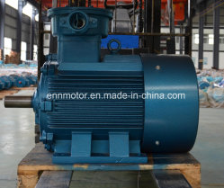 Three-Phase Induction Permanent Magnet Motor