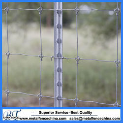 1.25bl, 1.33bl Painted and Galvanized Steel T Post