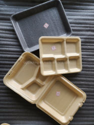 Multi Sizes Available Nature Biodegradable Fast Food Plate