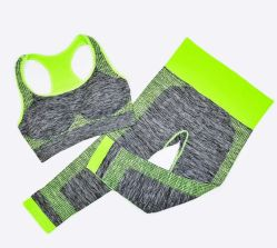 Seamless Yoga Wear Running Sports Bra Set