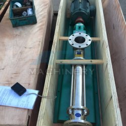 Sanitary Stainless Steel Vegetable Oil Transfer Pump