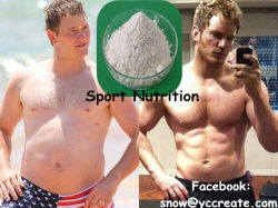 CAS No. 541-15-1 Sport Nutrition L-Carnitine Plant Extract with White Fine Powder