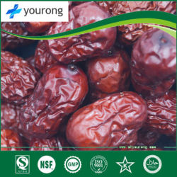 ISO SGS Certificatied Manufacturer Supply 100%Natural Fructus Jujubae Extract, Fruit of Ziziphus Jujuba