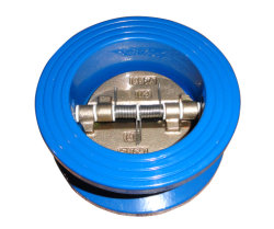Cast Iron Wafer Check Valve (DSCV-601)