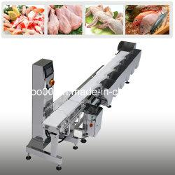 Automatic Weight Sorting Machine / Automatic Sorting Machine (CWM-200)