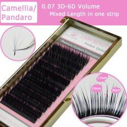 3f67e0b0934 Private Label Korean PBT Material Camellia Volume Eyelash Extension for  Salon Perfect Use