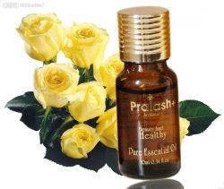 Dispel Dampness Essential Oil Bio Essential Oil Natural Massage Essential Oil for Men & Women