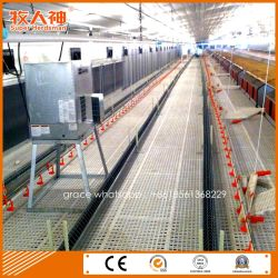 Automatic Poultry Equipment for Breeder Shed with Prefab House Construction