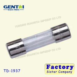 Hot Sale Golden Plated Glass Power Fuse/Glass Car Fuse/ Auto Fuse