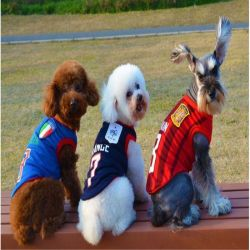 Cute Dog Pet Vest Clothes World Cup Football Dog Sportswear Soccer Jersey Pet Product