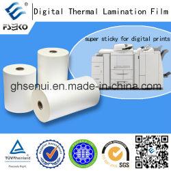 Super Bonding Thermal Lamination Film for Digital Printing (35mic Gloss & 35mic Matt)