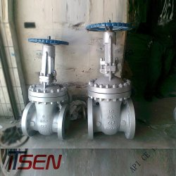 """2"""" Stainless Steel CF8m Pn16 Gear Operate Flange Gate Valve with Price"""
