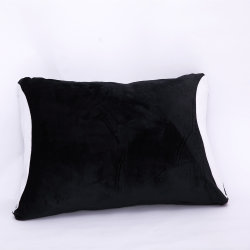 2 Pack 100% Polyester Multi Color Soft Dust Resistant Pillow Cover
