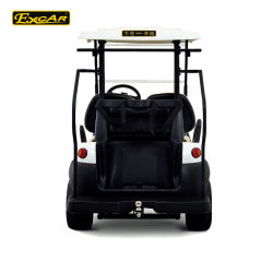 2 Seater Prices Electric Golf Cart for Sale