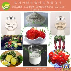 Good Quality Herbicide Simazine (96%TC, 50%SC, 80%WP, 90%WDG)