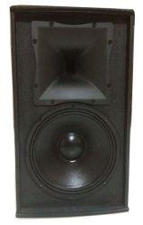 DSP Active Sound System Stage Speaker/Loudspeaker