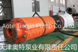 Mining Drainage Heavy Duty Flooded Deep Well Submersible Pump