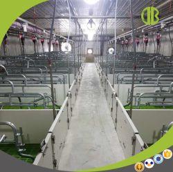 Wholesale Galvanized Farrowing Crate Pig Farming Equipment for Sale