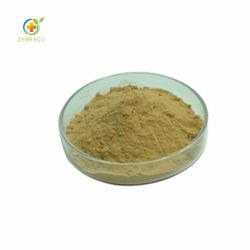 Super Green Food Supplement Organic Matcha Powder