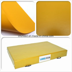 Fireproof PVC Coated Cover for Truck Covers/ Tents/Inflatables/Sports Mats