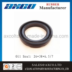 Double Lip Pump Mechanical Rubber Tc/ Sc Oil Seal for Mud Pump / Slurry 25*47*10