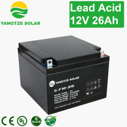 Yangtze 12V 26ah 28ah E-Bike Battery 12V 30ah Battery Charger UPS Backup Power Price