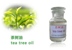 Green Tea Ingredient Extract Variety and Oil Form Tea Tree Oil CAS No. 68647-73-4