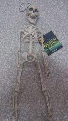 Halloween Skeleton 100% Plastic 5 FT Adult Lift Size Hanging Human Skeleton for Halloween Decoration