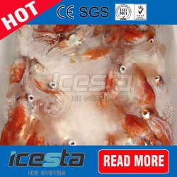5 Tons/Day Slurry Ice Machine Seawater Ice Making Machine for Seafood/Fish