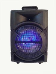 PA 8 Inch Wireless Control Audio Active DJ Karaoke Multimedia Speaker Box Bluetooth Trolley Speaker