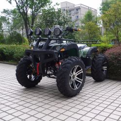 Factory Selling 1500W Adult Electric Quad Bike/ATV