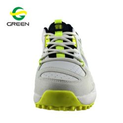 Greenshoe Online Shopping Brand Sport Shoes Men Cricket Shoes India