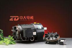 small AC motor, gear motor, with fun