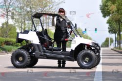 Factory Direct Selling New China UTV Cheap for Sale
